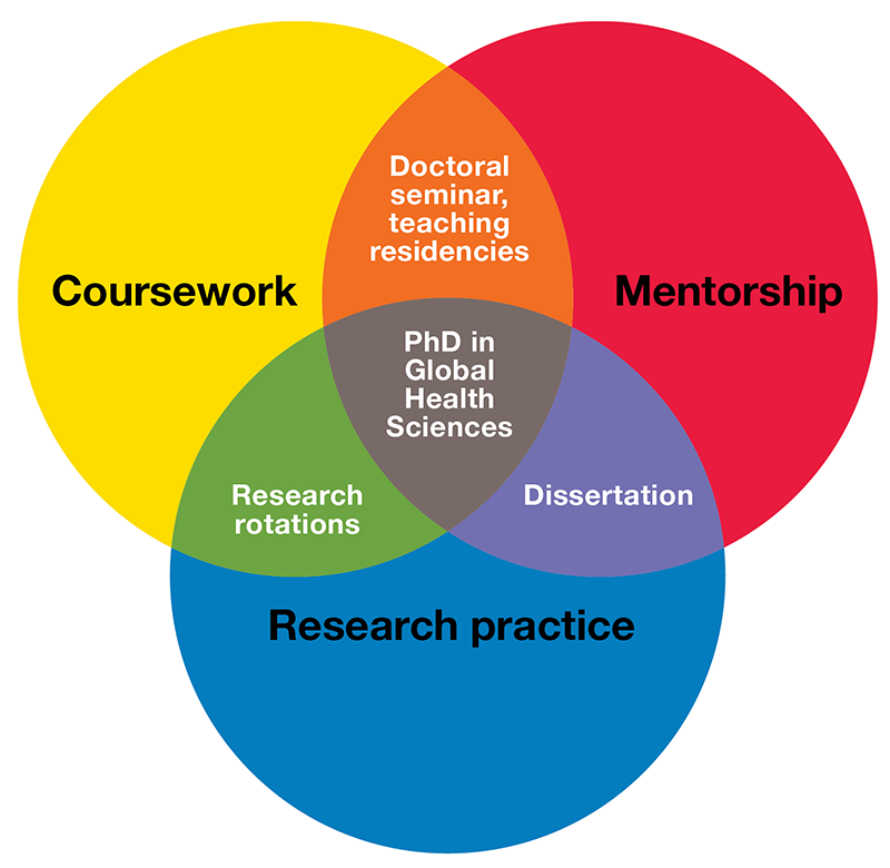Venn diagram: coursework, mentorship, and research practice